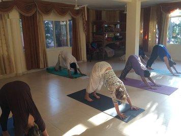 Yogvit Yogshala Yoga Teacher Training