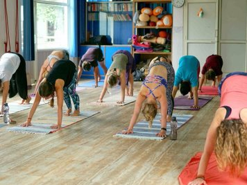Vinyasa Yoga Academy 300 Hrs Ashranga/Vinyasa Yoga Teacher  Training