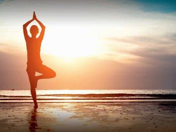 Yoga Vidya Mandiram 10 Days Self Transformational Sun Salutation Retreat